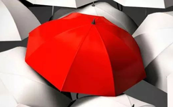 保险理赔揭秘 | 保险公司真的什么都能查到?